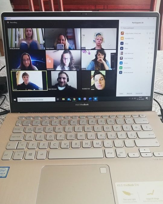 Online Meeting of the Partners
