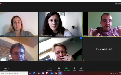 Project Partners Online Meeting